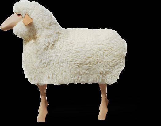ewe-sit